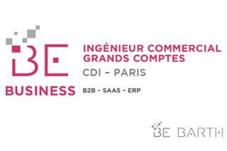 bebarth - Ingénieur Commercial Grands Comptes